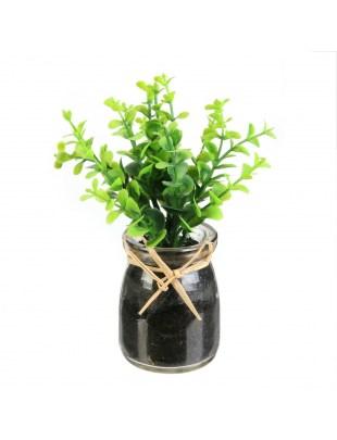Dekoracja zioła w słoiku Oregano