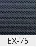 EXCLUSIVE-EX75