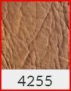 BASIC4255