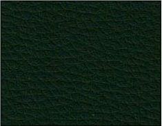 P-12 ciemno zielony